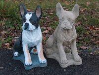 Superior Boston Terrier Concrete Dog