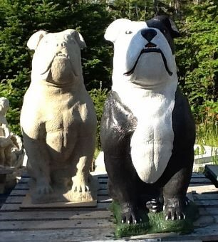 Ex Large English Bull Dog Statue